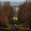 Ripon Cathedral from Studley Deer Park by Kat Simmons