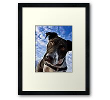 And Why Is That? Framed Print