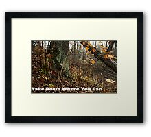 Take Roots Where You Can Framed Print