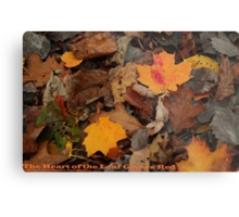The Heart of the Leaf Grows Red Metal Print