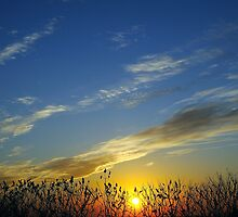 neXT To LasT sunSET, 2011 by cjcase