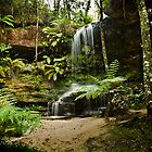 Burgess Falls, Blue Mountains by Damian Gobbo