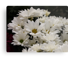 Daisy Flowers 7083 Metal Print
