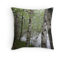 Birch Tree Waterscape 3228 Throw Pillow