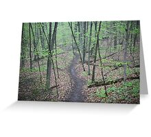Ravine Trail 3307 Greeting Card