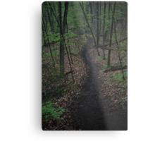 Ravine Trail 3310 Metal Print
