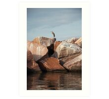 Blue Heron on Red Rock Art Print