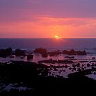 Hawaii Sunset 2011 by Francois Ward