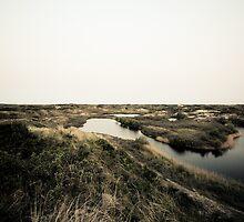 Dunes overview #1 by Remco den Hollander