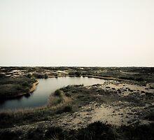 Dunes overview #2 by Remco den Hollander