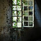 Grungy urbex window #2 by Remco den Hollander