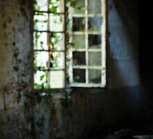 Grungy urbex window #3 by Remco den Hollander
