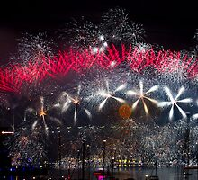 Happy New Year From Sydney by Steve Munro