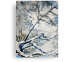 Another Winter Falls Into Spring Canvas Print