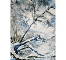 Another Winter Falls Into Spring Photographic Print