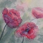 Poppies in my garden by Werner Langer