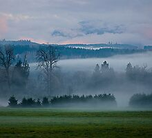 Carnation, Washington by richchop