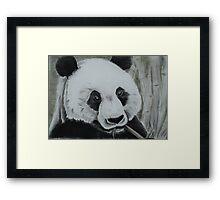 Panda - tinted charcoal Framed Print