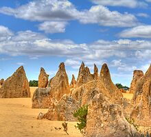 The Pinnacles #6, Cervantes, Western Australia by Elaine Teague