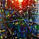 Evening Sun 4 by doodledesign