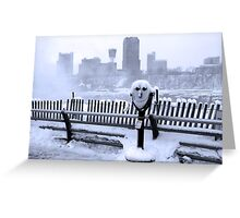 Face of the Falls Greeting Card
