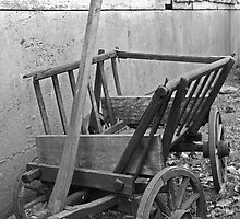 The Old Cart by Gary Horner