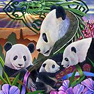 Panda Play by Graeme  Stevenson