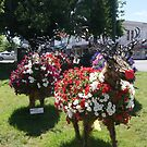 Rudolph and co in Ballarat, Victoria (Australia) by BronReid