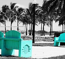 A Touch of Teal in Miami by KatillacPhotos