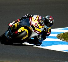 phillip island 2011 by faulsey