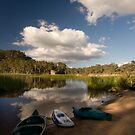 Dunn's Swamp ~ Wollemi National Park II by Lorraine Creagh