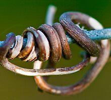 Hang in there by John Finkelde