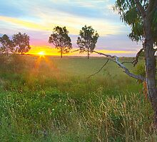 Sunset at Ballarat, Vic, Australia by Jennifer Bailey