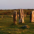 Hurlers Stone Circle by Neil Cox