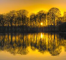 Paul's Pond, Golden Acre Park, Leeds by Ian Wray
