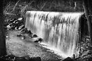Manchaug Falls  by John  Kapusta