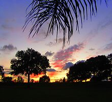 Sunset in Florida on New Year's Day by Debbie Robbins