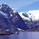 Norwegian Fiord #3. by johnrf