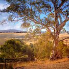 This is Australia - Kanmantoo, The Adelaide Hills, South Australia by Mark Richards