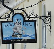 The Albion Inn by pix-elation