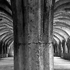 Fountains Abbey Yorkshire by tunna