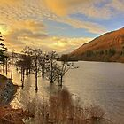 Loch Tay View by Tom Gomez