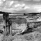 Wreck of the Harriett by Robert Down