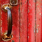 The Red Door by Rae Tucker