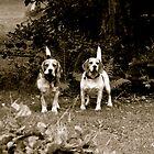 Otis&TIna by dwadepoupe