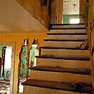 Henryton Tuberculosis Sanatorium by Robin Lee