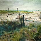 The Beach - Chincoteaque Beach, Virginia - Dedicated to Dad by teresa731
