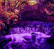 Waterfall in the Other World by Veronica Schultz