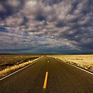 Road to Cisco by Rick Louie