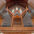 Cathedral of St Stephen Pipe Organ  Brisbane  Queensland by William Bullimore